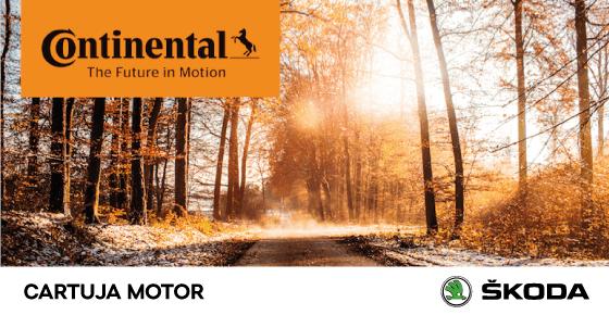 ¡Cambia tus neumáticos en Cartuja Motor al mejor precio del 22/10 al 16/11!