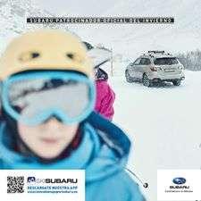 ¿Por qué los Subaru son los coches más seguros sobre agua, hielo o nieve?