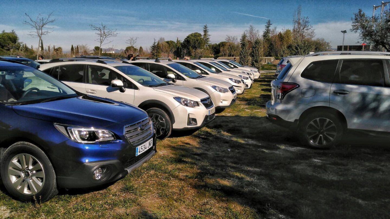 Un centenar de subaristas se reúnen en Sierra Nevada
