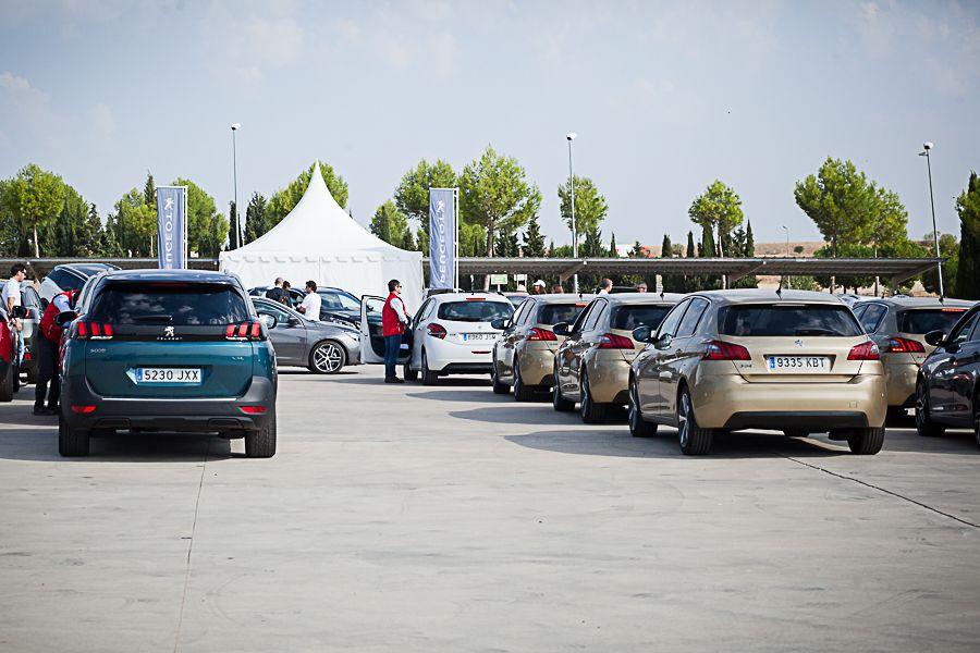 El Peugeot Experience en el INTA, un éxito de afluencia con casi dos mil asistentes en dos días