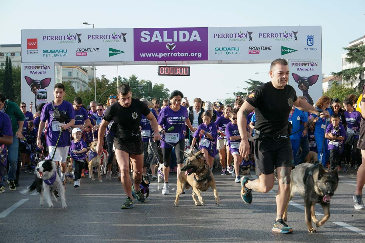 Más de 4.000 dog lovers unidos por la adopción responsable en Perrotón Madrid 2017