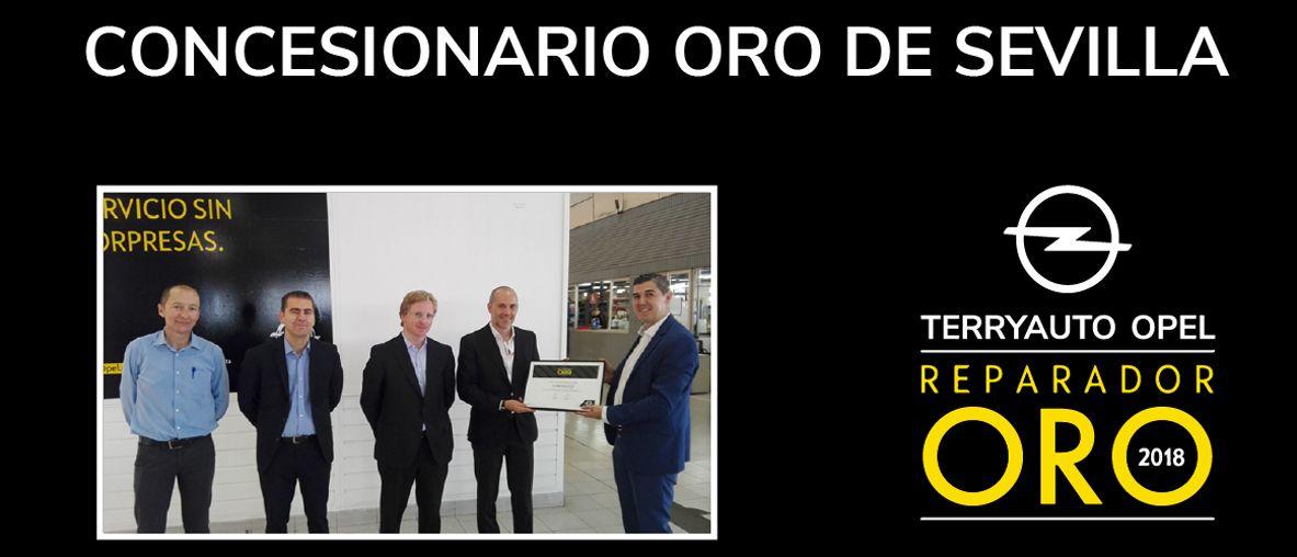 Terryauto, Concesionario oro Sevilla, Terryauto Opel reparador Oro