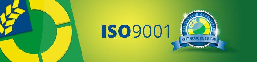 EUROMASTER RENUEVA POR 6º AÑO CONSECUTIVO SU CERTIFICACIÓN DE CALIDAD ISO 9001