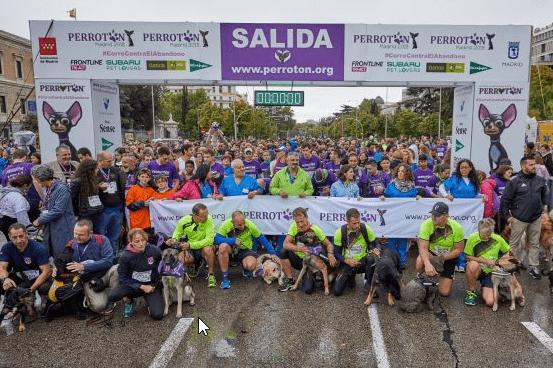 Un año más, los Petlovers tomamos las calles en Perrotón Madrid 2018. ¡Guau!