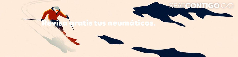 REVISIÓN Y SEGURO DE NEUMÁTICOS