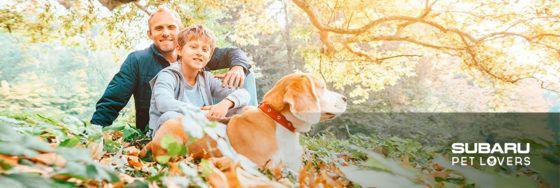 Otoño, perretes y Subaru: llega la época de las hojas caídas