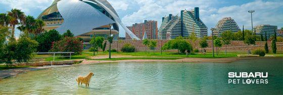 El centro de Valencia también es para disfrutar con tu Subaru y tu mascota