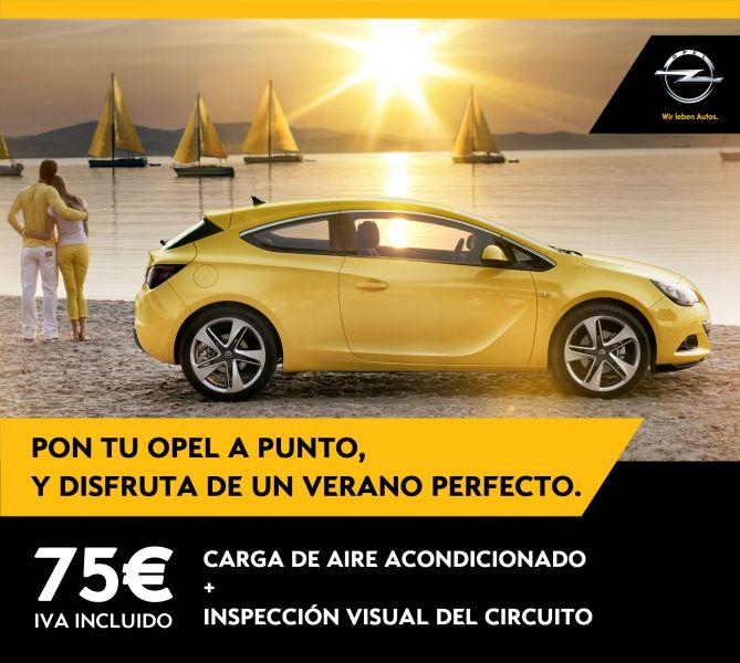 CARGA DE AIRE ACONDICIONADO + INSPECCIÓN VISUAL 75€