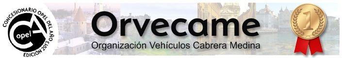 Orvecame, Concesionario del Año 2013