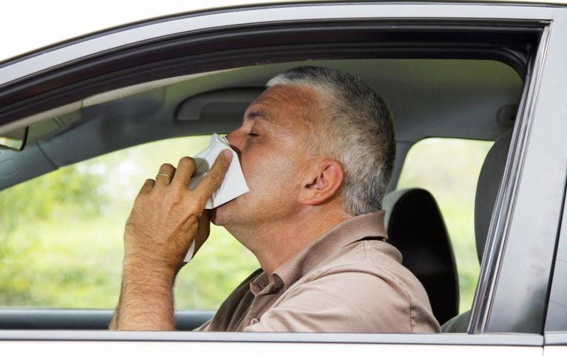 ¿Alergias? ¡Cambia tu filtro de aire del coche!