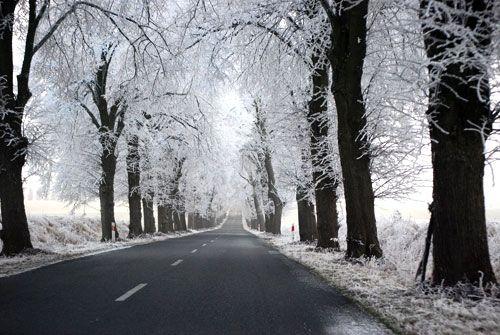 Prepara tu coche para el invierno.