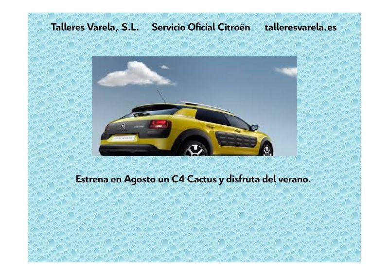 Agosto oferta especial gama Cactus