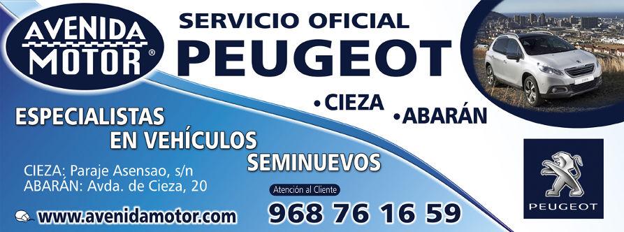 Servicio Oficial Peugeot