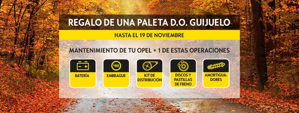 Este otoño, pon tu Opel a tu punto con la seguridad del Servicio Oficial.