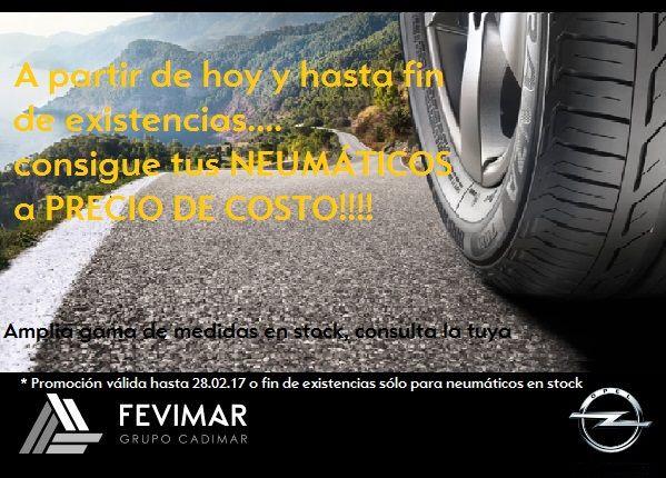 ¿Quieres tus neumáticos al costo?