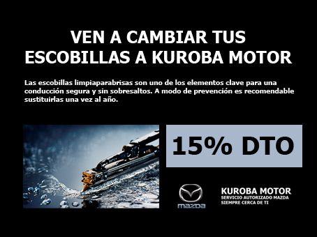 Obtenga un 15% de dto. al cambiar las escobillas de su vehiculo