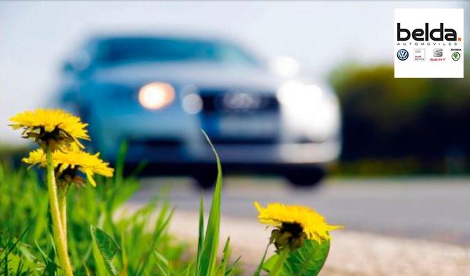 Cambio de los filtros de aire en primavera