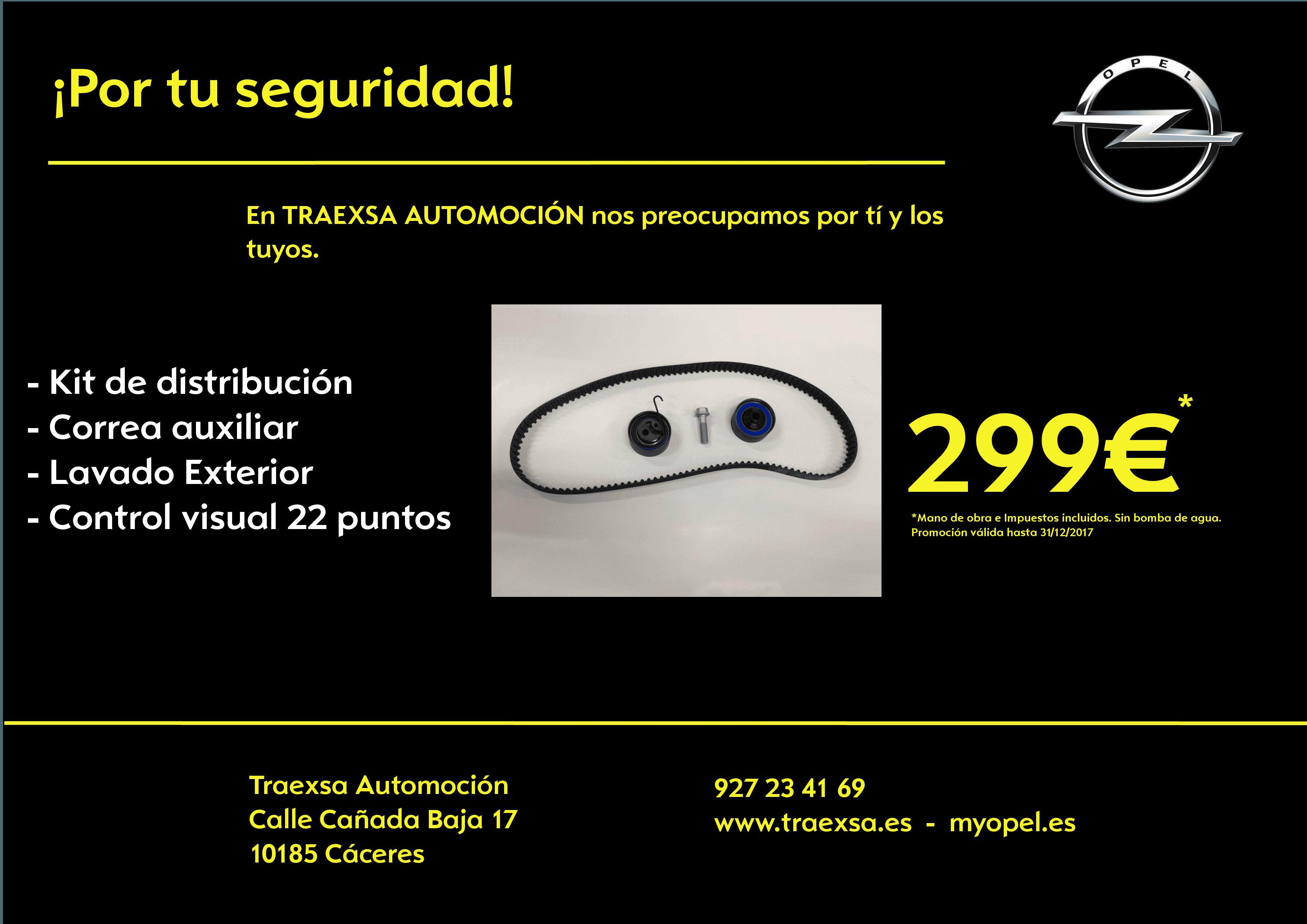SUSTITUIR CONJUNTO DISTRIBUCION Y CORREA  DE ACCESORIOS POR 299€