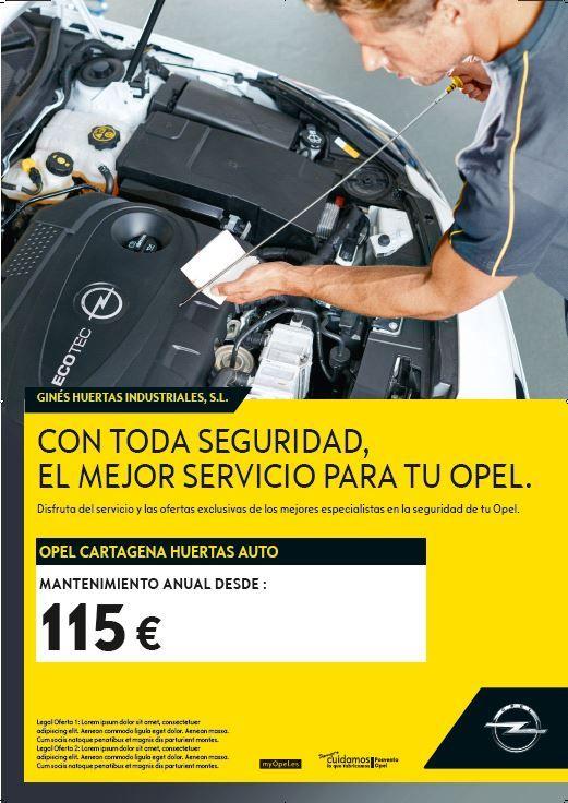Mantenimiento ANUAL desde 115€