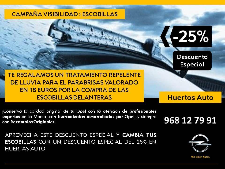 Campaña VISIBILIDAD: ESCOBILLAS