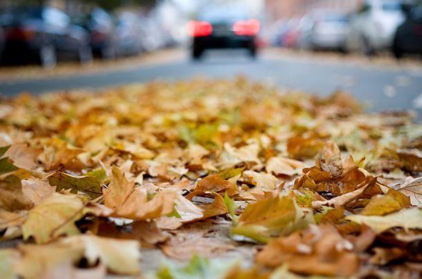 ¿Cómo cuidar de tu coche en otoño y prepararlo para el invierno?