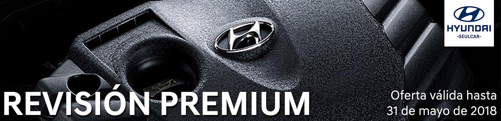 Revision Premium Hyundai Seulcar