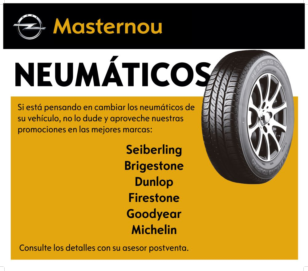 Nuevos neumáticos en Opel Masternou