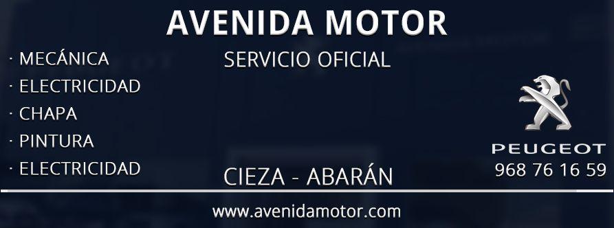 Avenida Motor Servicio Oficial