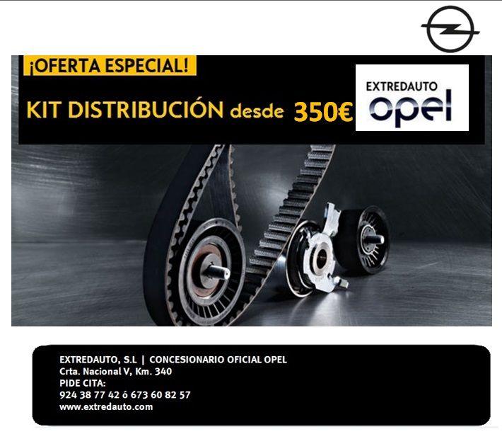 Cambio Correa Distribución desde 350€ sea cual sea la marca de tu vehículo