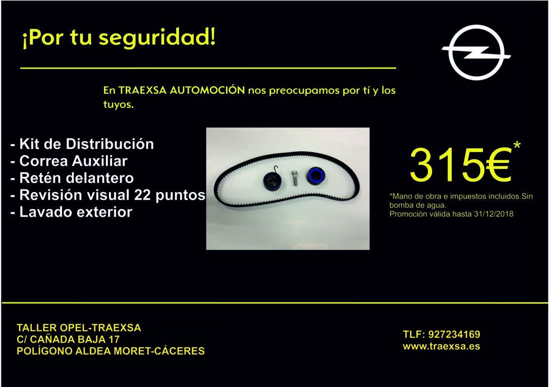 SUSTITUIR DISTRIBUCION Y CORREA ACCESORIOS POR 315€
