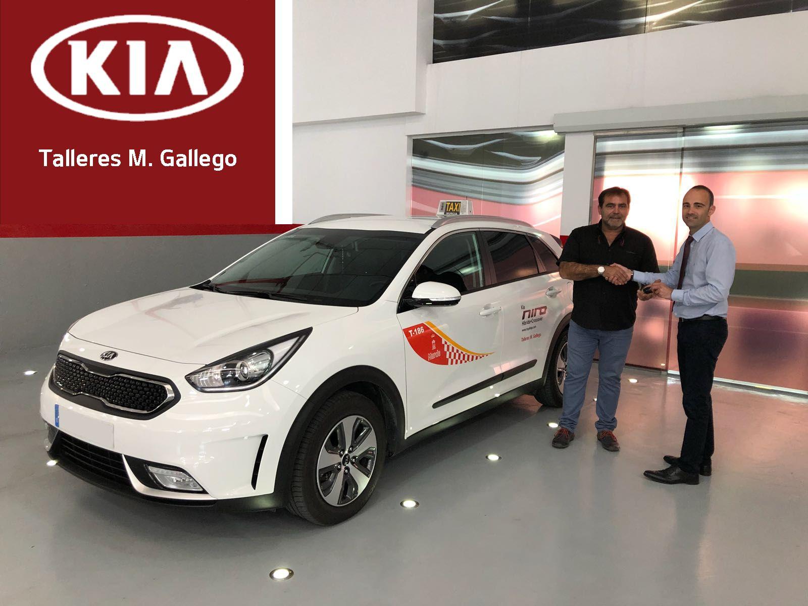 Ya circula en Murcia el primer TAXI Crossover Híbrido, el Nuevo KIA NIRO HEV