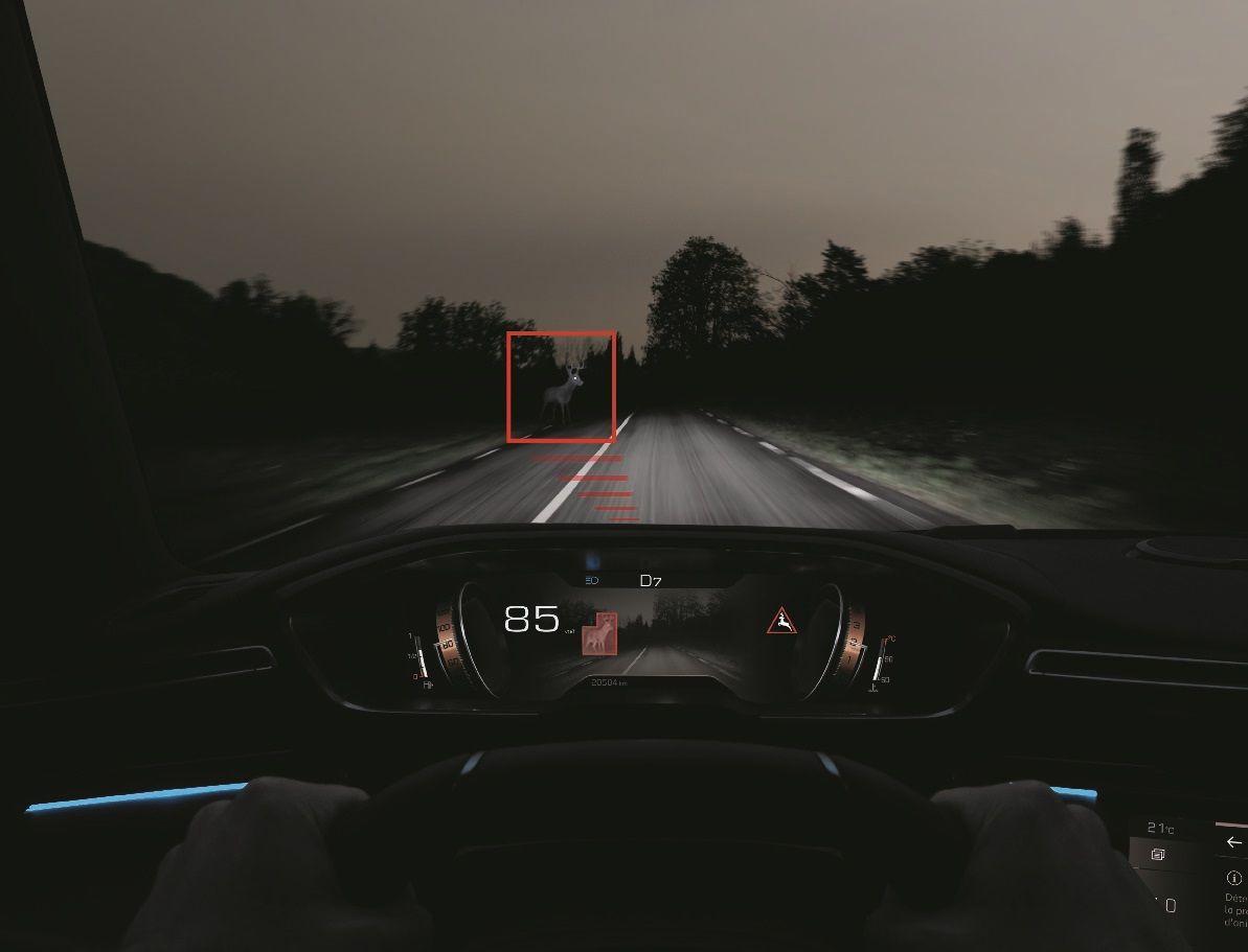 El Peugeot 508 y la seguridad: cómo ver un jabalí a 200 metros en plena noche
