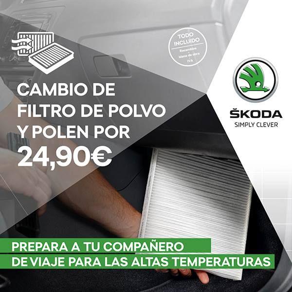 Cambio de filtro polvo y polen por 24,90 €