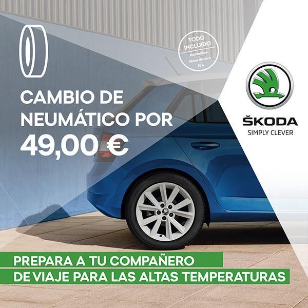 Cambio de neumático por 49,00 €