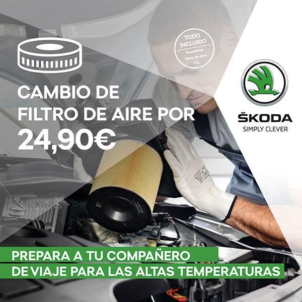 Cambio de filtro de aire por 24,90 €