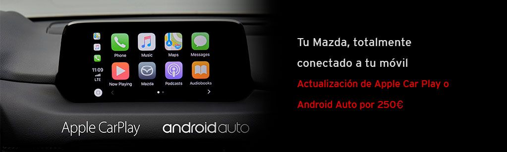 Car Play o Android Auto 250€