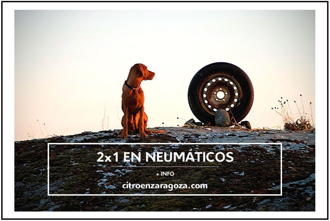 ¡ 2x1 EN NEUMÁTICOS TODO EL MES DE AGOSTO !
