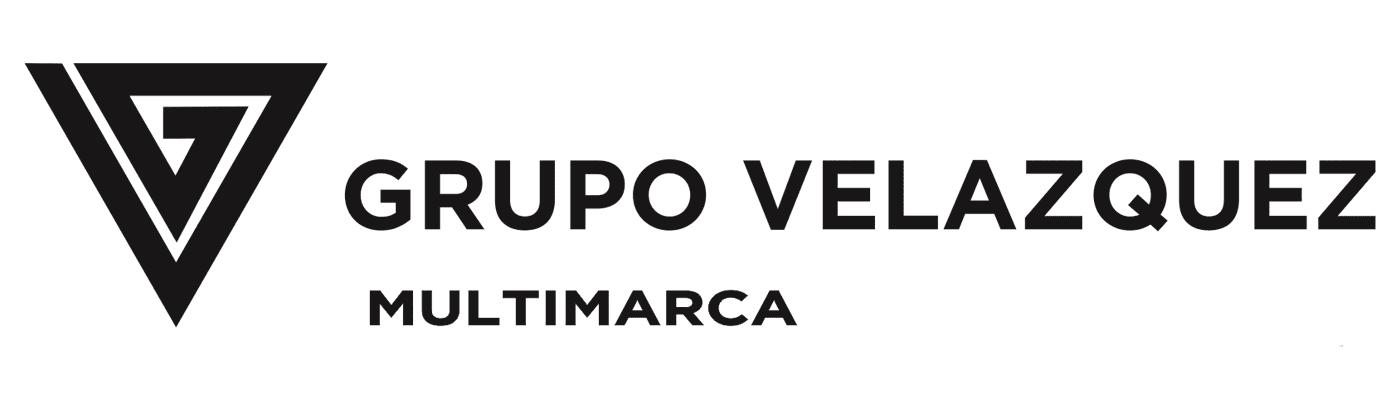 Grupo Velazquez