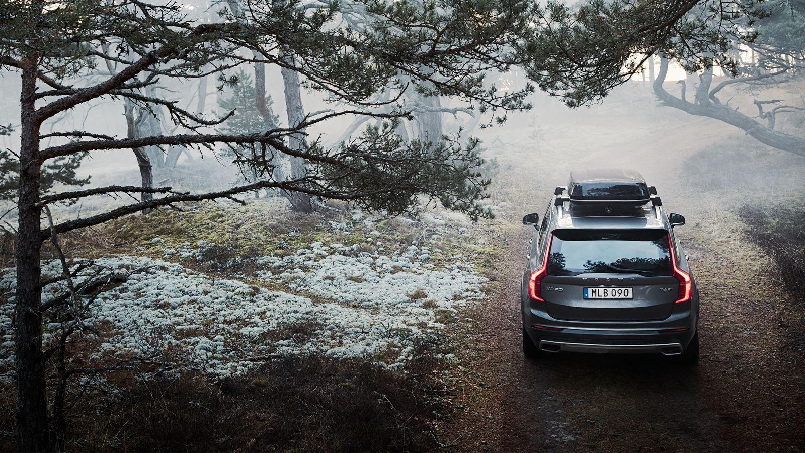 Seguridad al volante en invierno, ¿neumáticos o cadenas? Descubre con Volvo tu mejor opción