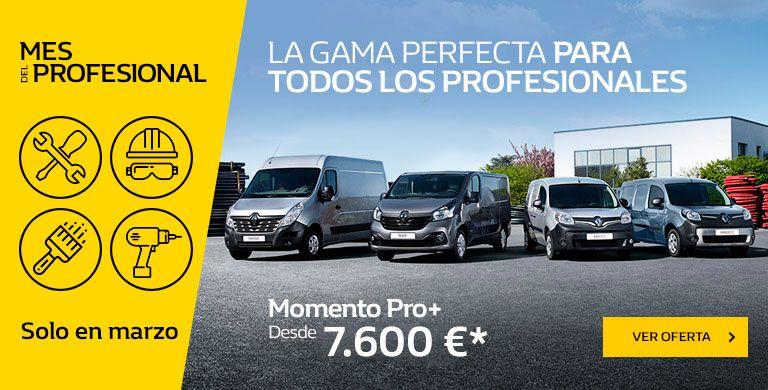 Renault MES DEL PROFESIONAL