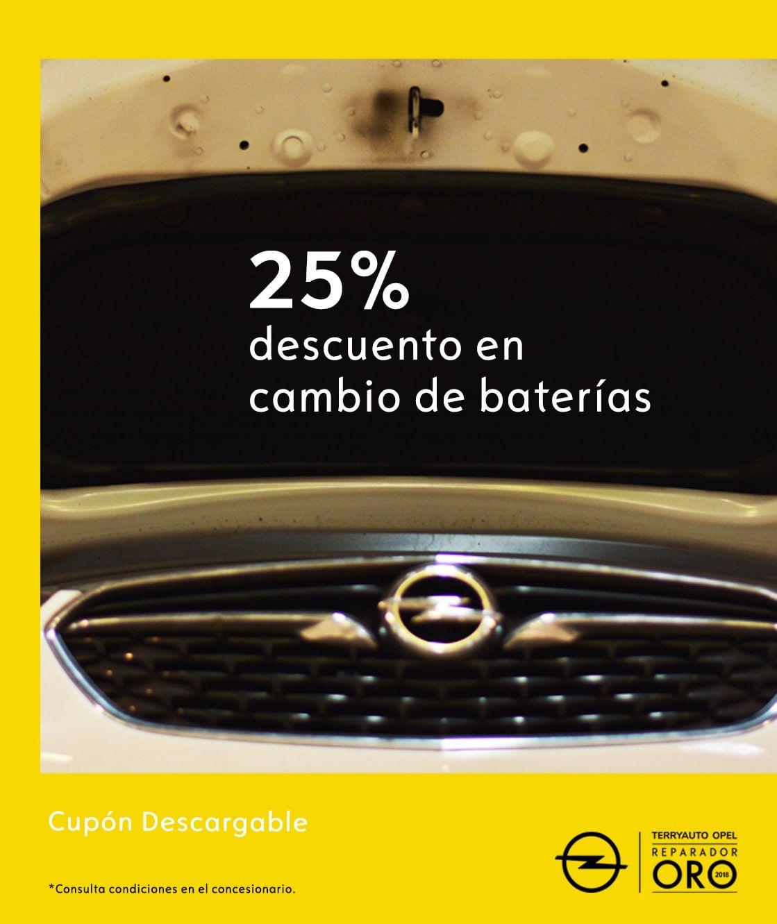 25% DTO EN CAMBIO DE BATERÍAS