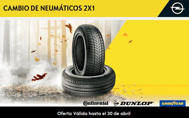 NEUMATICOS 2X1