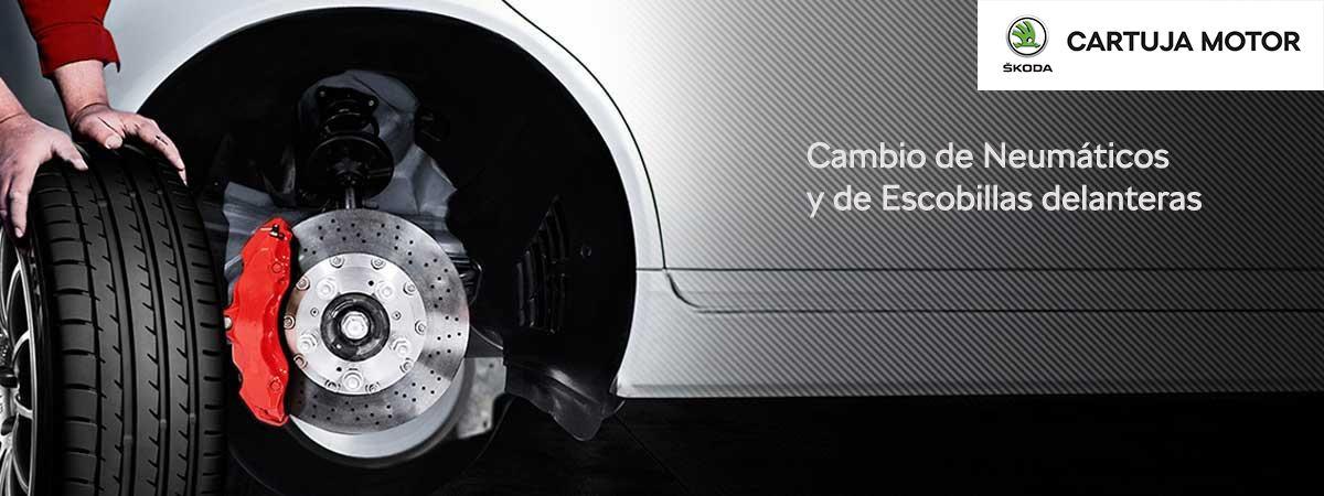 CAMPAÑA PRIMAVERA VERANO //  Cambio Neumáticos y Escobillas.