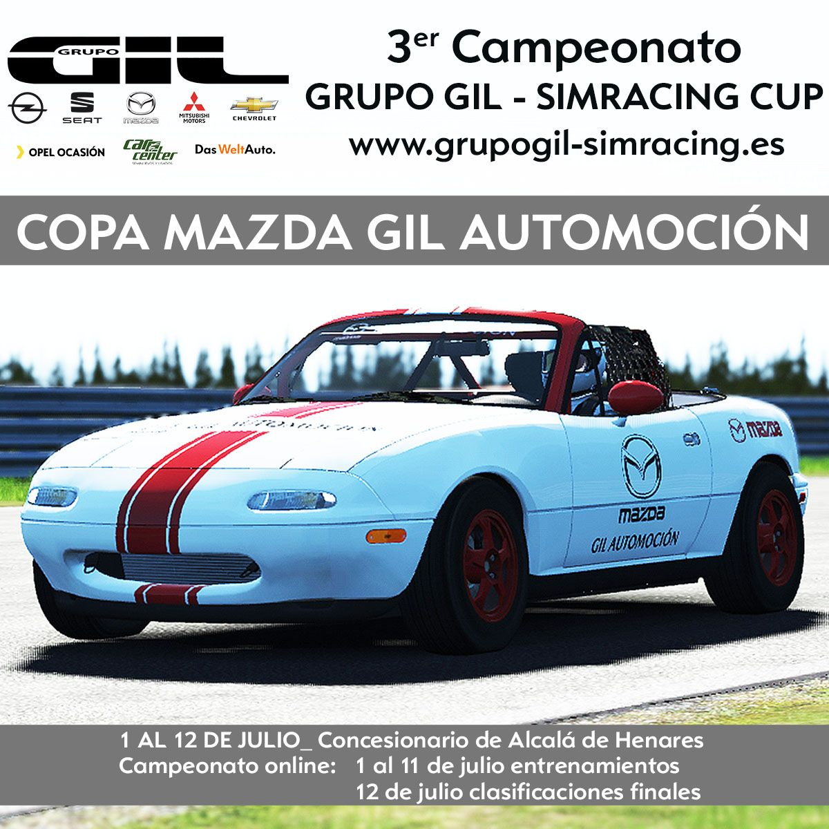 3ª RONDA DEL CAMPEONATO GRUPO GIL - SIMRACING CUP