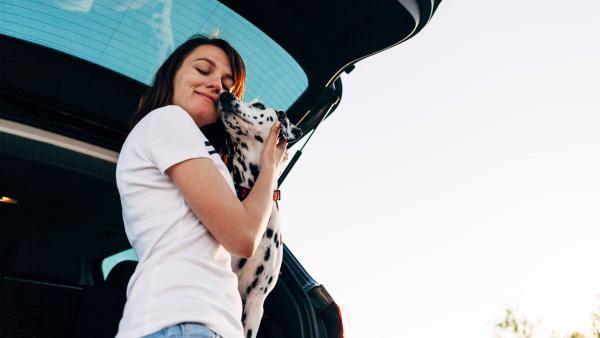¿Viajas con tu mascota en coche? Cinco errores que debes evitar