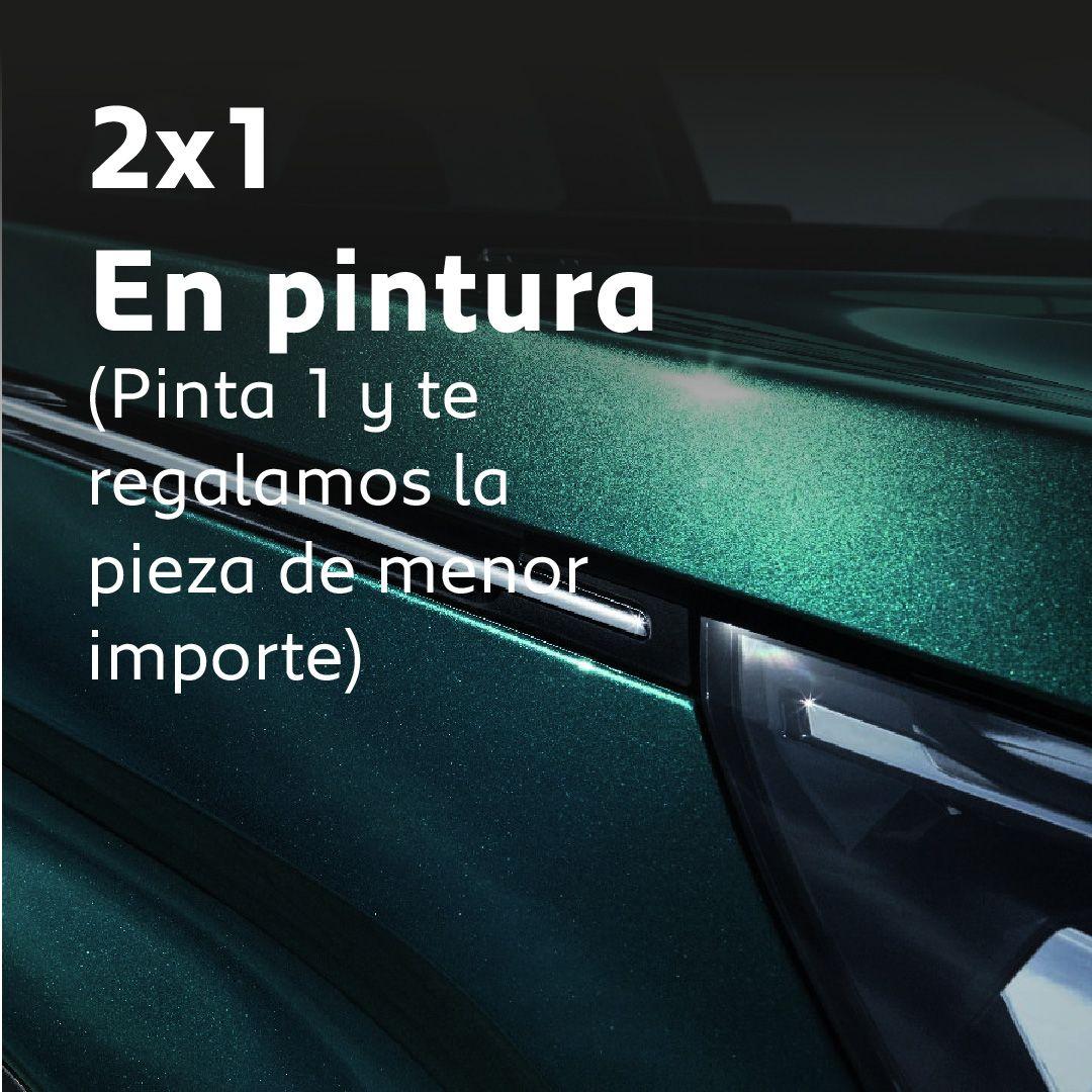 2X1 EN PINTURA