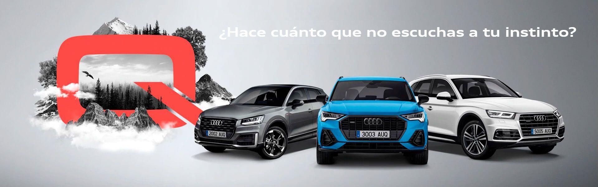 Renting en toda la gama Q de Audi