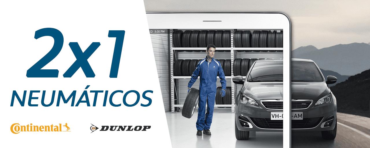 2x1 neumáticos Dunlop & Continental