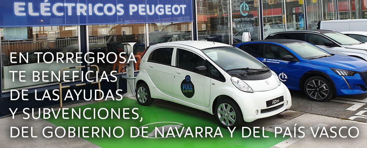 En Torregrosa te facilitamos toda la información para que te beneficies de las ayudas de Navarra y el País Vasco.