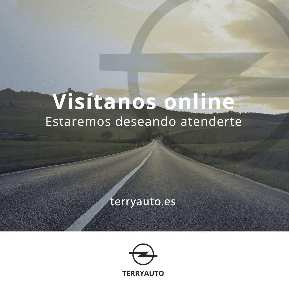 Visítanos online